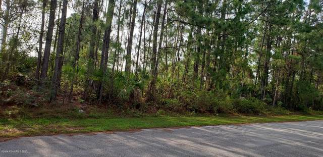 907 Sable Circle SE, Palm Bay, FL 32909 (MLS #895964) :: Armel Real Estate