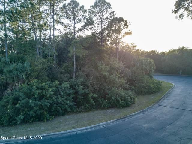 2671 Sussana Lane, Titusville, FL 32780 (MLS #896780) :: Blue Marlin Real Estate