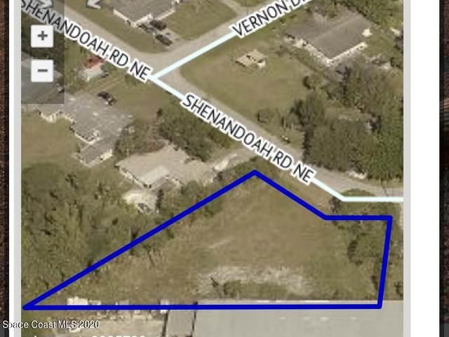 2350 Shenandoah Road NE, Palm Bay, FL 32905 (MLS #896849) :: Premium Properties Real Estate Services