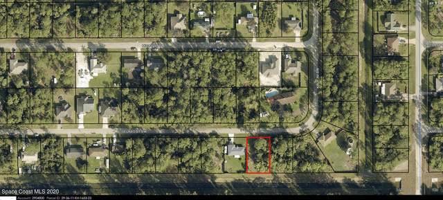 716 Gelaso Street SW, Palm Bay, FL 32908 (MLS #897194) :: Armel Real Estate