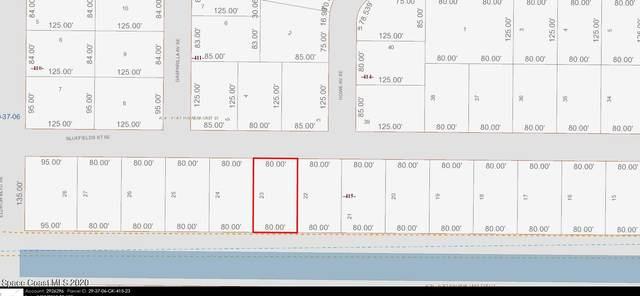 470 Bluefields Street SE, Palm Bay, FL 32909 (MLS #897692) :: Blue Marlin Real Estate