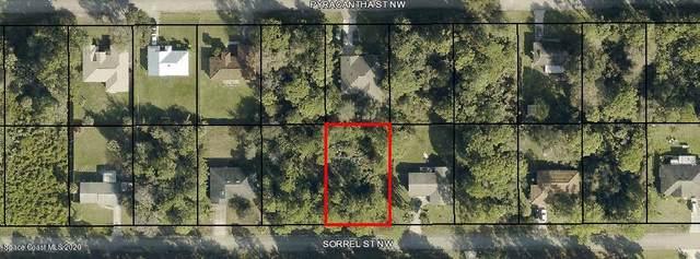 855 Sorrel Street NW, Palm Bay, FL 32907 (MLS #897837) :: Armel Real Estate
