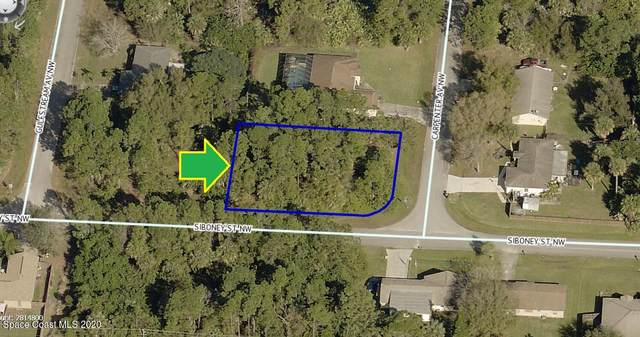 400 Corner Lot On Carpenter Avenue NW, Palm Bay, FL 32907 (MLS #898069) :: Armel Real Estate