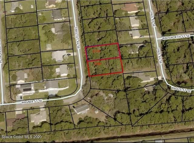 1173-1185 Yakutat Avenue SE, Palm Bay, FL 32909 (MLS #898268) :: Armel Real Estate
