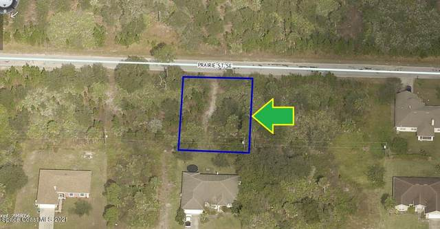 270 Prairie Street SE, Palm Bay, FL 32909 (MLS #898568) :: Coldwell Banker Realty