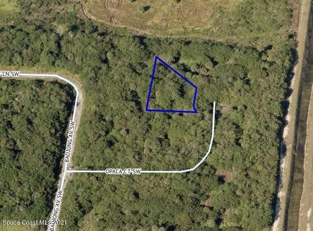 913 Opaca Court SW, Palm Bay, FL 32908 (MLS #898761) :: Premium Properties Real Estate Services