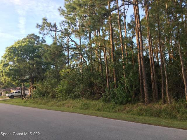 1249 Wabash Road SE #16, Palm Bay, FL 32909 (MLS #898809) :: Premium Properties Real Estate Services