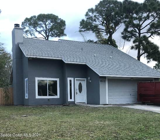 823 Thuringer Street NW, Palm Bay, FL 32907 (MLS #898825) :: Premium Properties Real Estate Services