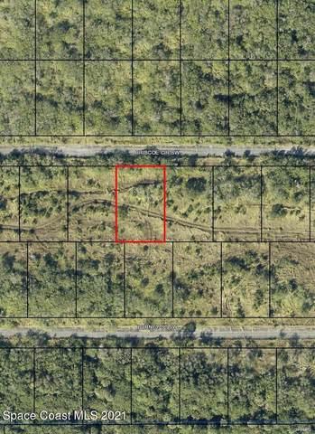 1635 Briscoe Circle SW, Palm Bay, FL 32908 (MLS #898882) :: Premium Properties Real Estate Services