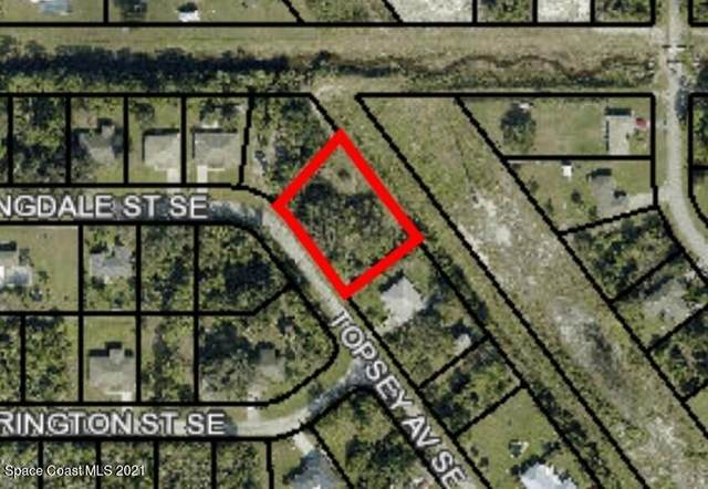 3101 Topsey Avenue SE, Palm Bay, FL 32909 (MLS #898884) :: Premium Properties Real Estate Services