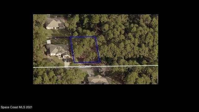 425 Olsmar Street, Palm Bay, FL 32908 (MLS #898975) :: Dalton Wade Real Estate Group