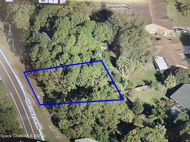 345 Krassner Drive #39, Palm Bay, FL 32907 (MLS #899113) :: Premium Properties Real Estate Services