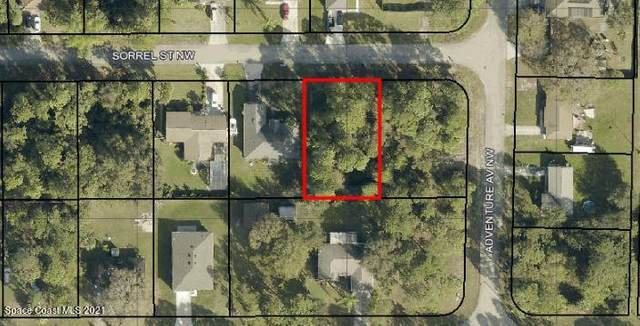 814 Sorrel Street NW, Palm Bay, FL 32907 (MLS #899250) :: Armel Real Estate