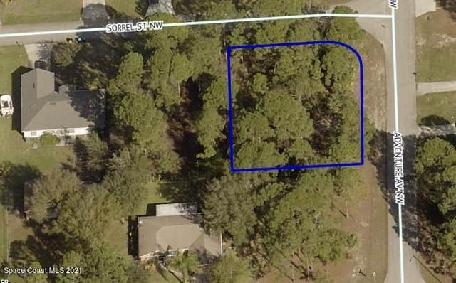 0000 Unknown, Palm Bay, FL 32907 (MLS #899252) :: Armel Real Estate