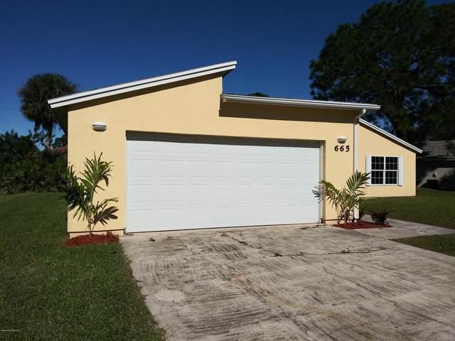 665 Americana Boulevard NE, Palm Bay, FL 32907 (MLS #899309) :: Engel & Voelkers Melbourne Central