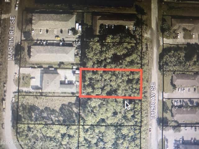498 Thor Avenue SE, Palm Bay, FL 32909 (MLS #899549) :: Blue Marlin Real Estate
