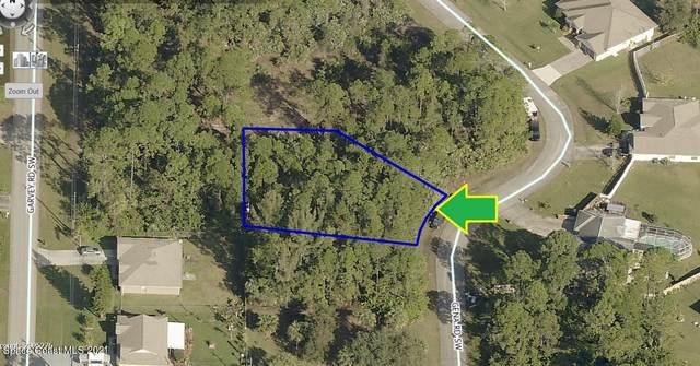 880 Gena Road SW, Palm Bay, FL 32908 (MLS #899629) :: Armel Real Estate