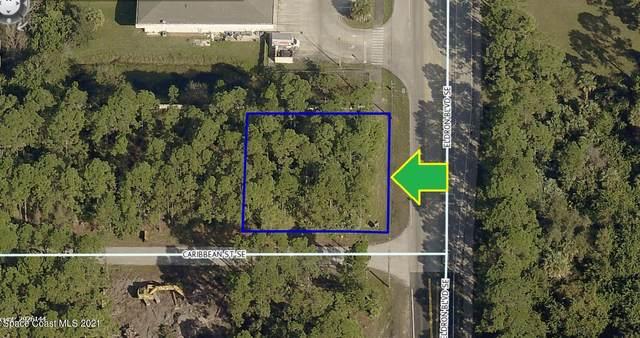 451 Corner Lot On Caribbean Street SE, Palm Bay, FL 32909 (MLS #899742) :: Blue Marlin Real Estate