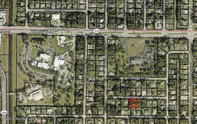 290 Hinchman Street SE, Palm Bay, FL 32909 (MLS #899784) :: Blue Marlin Real Estate