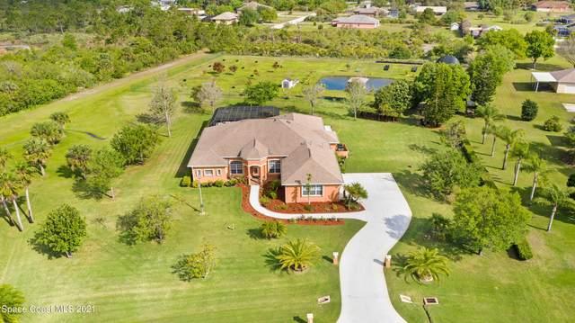 380 Lake View Lane, Palm Bay, FL 32909 (MLS #900065) :: Engel & Voelkers Melbourne Central