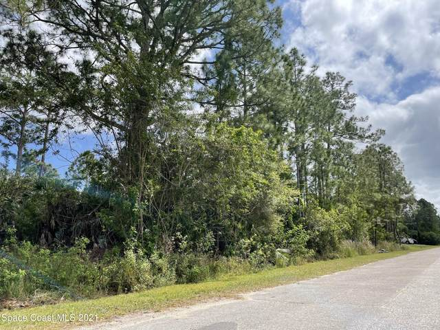 3263 Reef Road SE, Palm Bay, FL 32909 (MLS #900373) :: Armel Real Estate