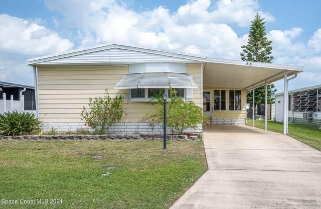 616 Bougainvillea Circle, Sebastian, FL 32976 (MLS #900469) :: Dalton Wade Real Estate Group