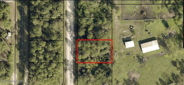 991 Happiness Avenue SW, Palm Bay, FL 32908 (MLS #900500) :: Engel & Voelkers Melbourne Central