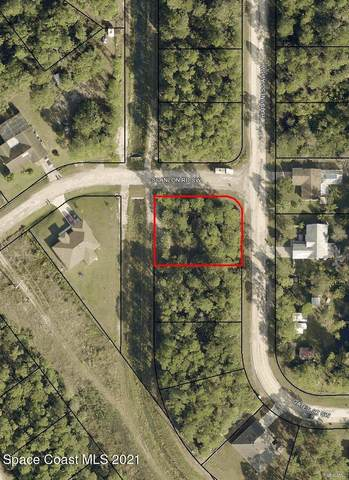 1014 Happiness Avenue SW, Palm Bay, FL 32908 (MLS #900856) :: Engel & Voelkers Melbourne Central