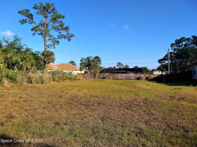 906 Tolson Street SE, Palm Bay, FL 32909 (MLS #900905) :: Armel Real Estate