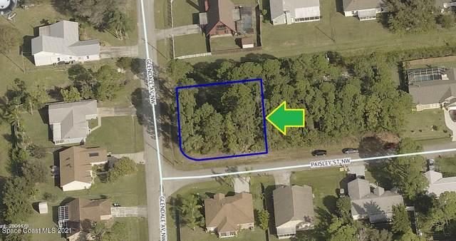 1697 Corner Lot On Paisley Street, Palm Bay, FL 32907 (MLS #901123) :: Armel Real Estate
