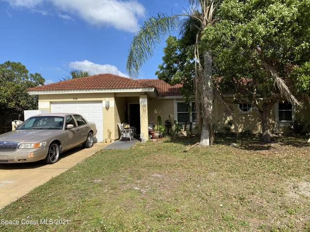 539 Galilean Avenue SE, Palm Bay, FL 32909 (MLS #901219) :: Premium Properties Real Estate Services