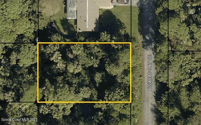 432 Alvarado Avenue SE, Palm Bay, FL 32909 (MLS #901332) :: Blue Marlin Real Estate