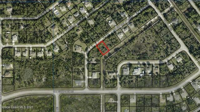 2853 Gaghagen Street, Palm Bay, FL 32909 (MLS #901502) :: Armel Real Estate