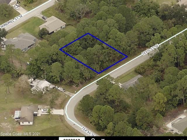 1025 Tevis Street SE, Palm Bay, FL 32909 (MLS #901508) :: Armel Real Estate