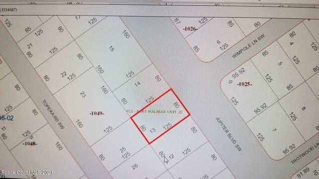 2058 Jupiter Boulevard SW, Palm Bay, FL 32908 (MLS #901583) :: Armel Real Estate