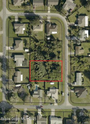 0 Diamond (South) Avenue NE, Palm Bay, FL 32907 (MLS #901589) :: Blue Marlin Real Estate