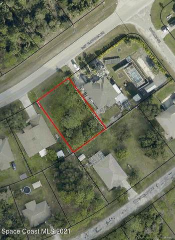 2623 San Filippo Drive SE, Palm Bay, FL 32909 (MLS #901682) :: Premium Properties Real Estate Services