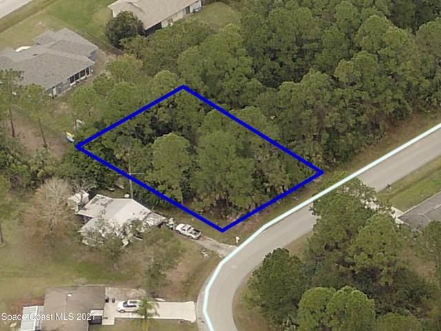 1017 Tevis Street SE, Palm Bay, FL 32909 (MLS #901693) :: Armel Real Estate