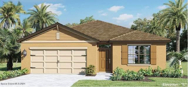 3631 Peony Court SE, Palm Bay, FL 32908 (MLS #901764) :: Engel & Voelkers Melbourne Central