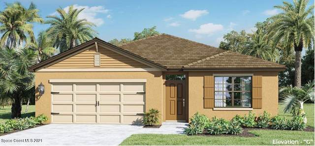 3614 Peony Court SE, Palm Bay, FL 32908 (MLS #901780) :: Engel & Voelkers Melbourne Central