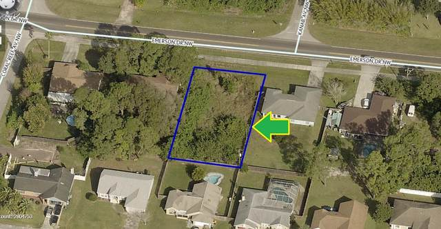 140 Emerson Drive NW, Palm Bay, FL 32907 (MLS #901903) :: Premium Properties Real Estate Services