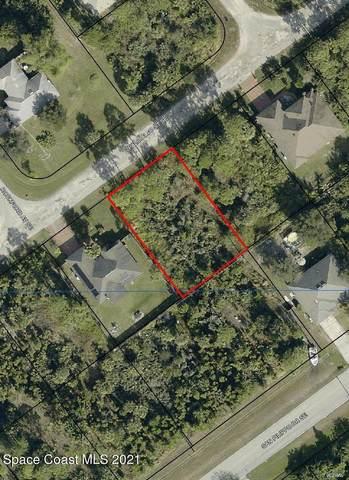 870 Palo Alto Street SE, Palm Bay, FL 32909 (MLS #901914) :: Premium Properties Real Estate Services