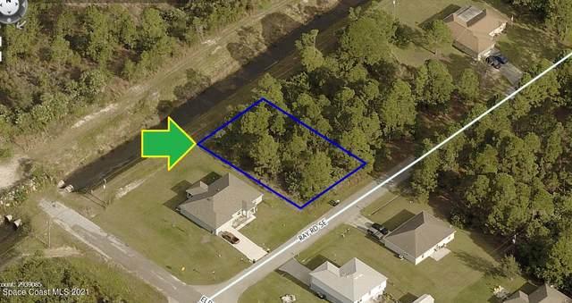 1011 Ray Road SE, Palm Bay, FL 32909 (MLS #901986) :: Dalton Wade Real Estate Group