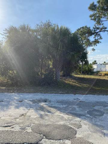 2998 Fontainebleau Avenue SE, Palm Bay, FL 32909 (MLS #902020) :: Dalton Wade Real Estate Group