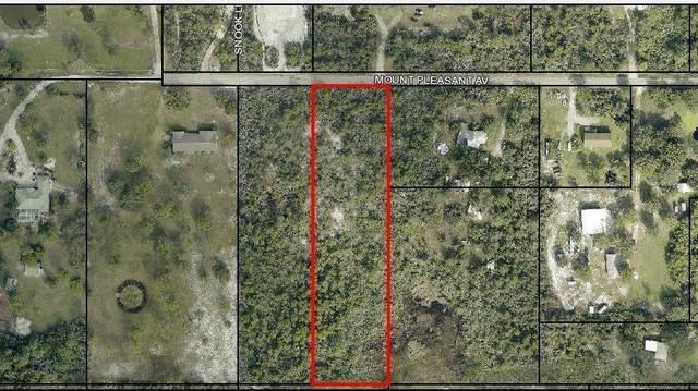 0000 Mount Pleasant Avenue, Grant Valkaria, FL 32949 (MLS #902035) :: Armel Real Estate