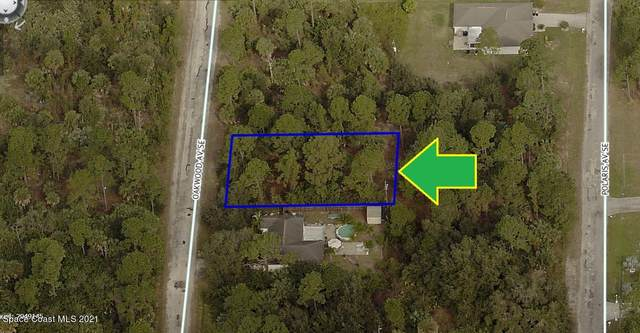 3025 Oakwood Avenue SE, Palm Bay, FL 32909 (MLS #902079) :: Armel Real Estate