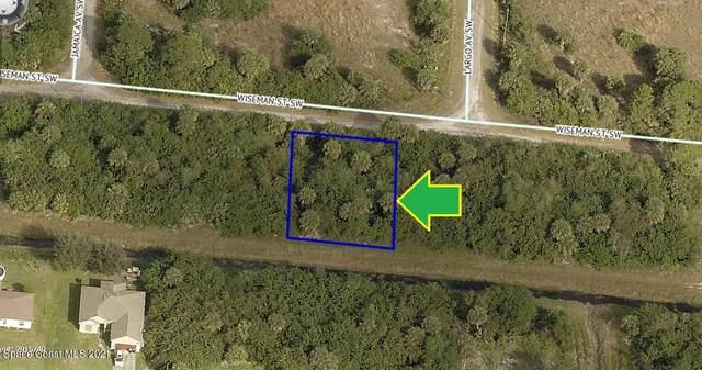 670 Wiseman Street SW, Palm Bay, FL 32908 (MLS #902291) :: Premier Home Experts