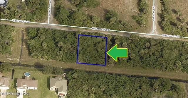 684 Wiseman Street SW, Palm Bay, FL 32908 (MLS #902292) :: Premier Home Experts
