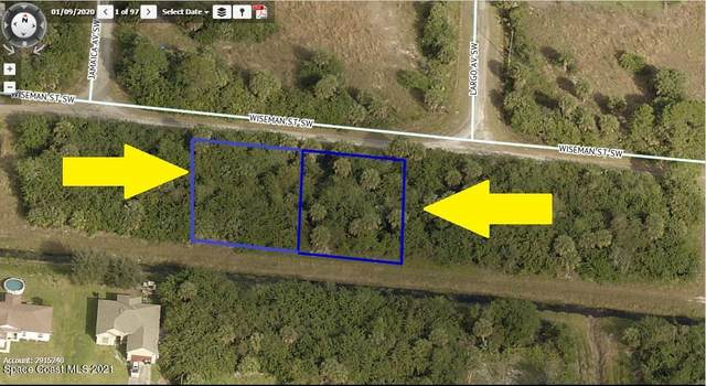 670-684 Two Adjacent Lots On Wiseman Street SW, Palm Bay, FL 32908 (MLS #902293) :: Armel Real Estate