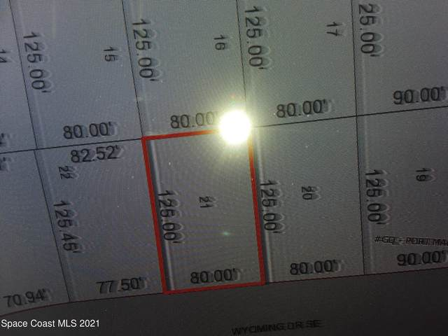 1185 Wyoming Drive SE, Palm Bay, FL 32909 (MLS #902558) :: Armel Real Estate